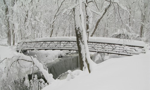 Bridge to Rock Creek Trail for access from Linthicum St.